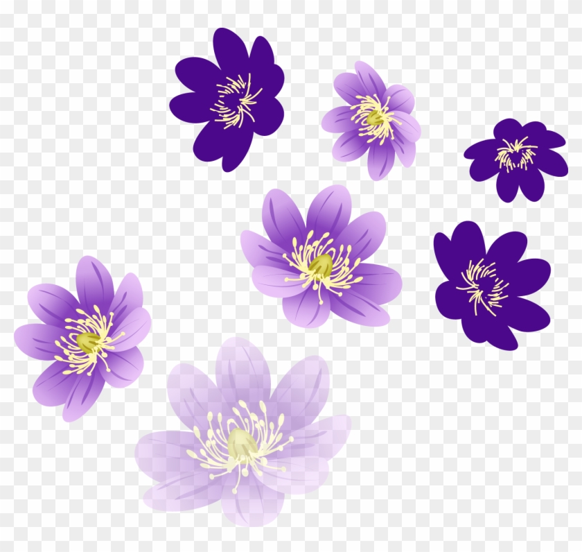 Flowers Images Png.