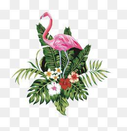 2019 的 Pink Flamingo, Flamingo, Clipart, Hand PNG Transparent.