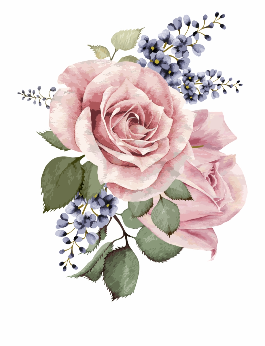 Watercolor Flower Png Transparent Background.