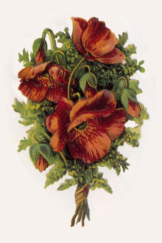 "Farmhouse Chic, ""Yellow Coreopsis"" (Botanical Decor, Flower Wall."