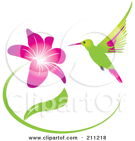 Drawn And Colored Hummingbird And Bleeding Heart Flowers Posters.