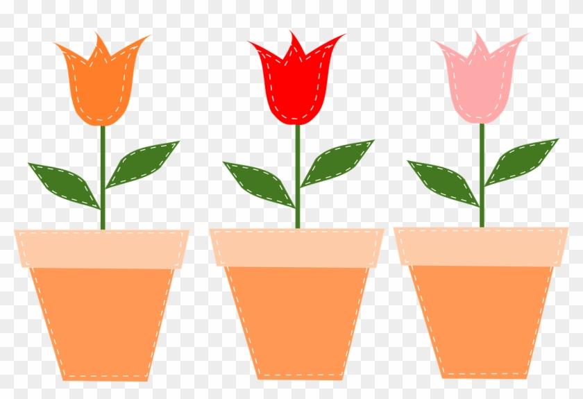 Flower Pots Pots Tulips Flowers Png Image.