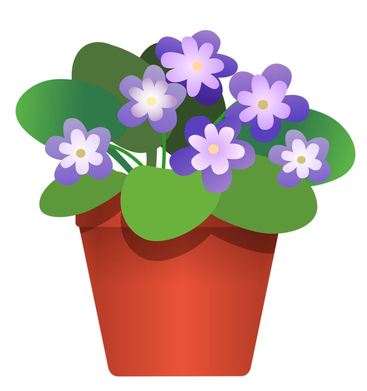 Flower pot clipart no background.