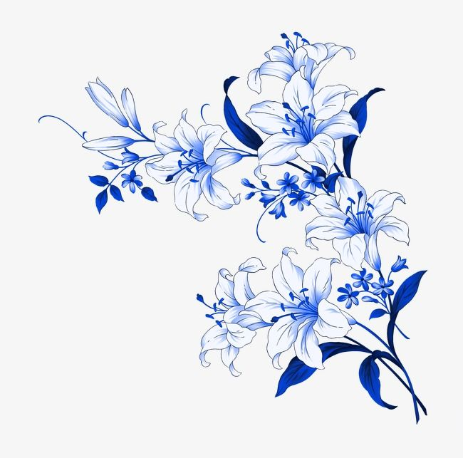 Flowers, Pattern, Flower Print PNG Transparent Image and Clipart for.