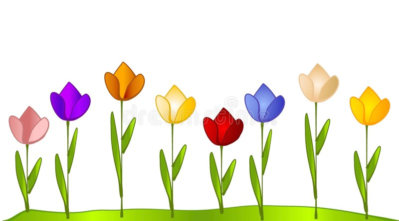 Flower Row Stock Illustrations.