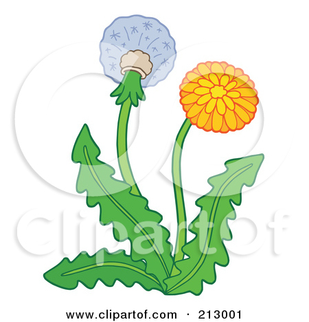 Clipart 3d Dandelion Seed Head With A Fibonacci Sequence Pattern 3.