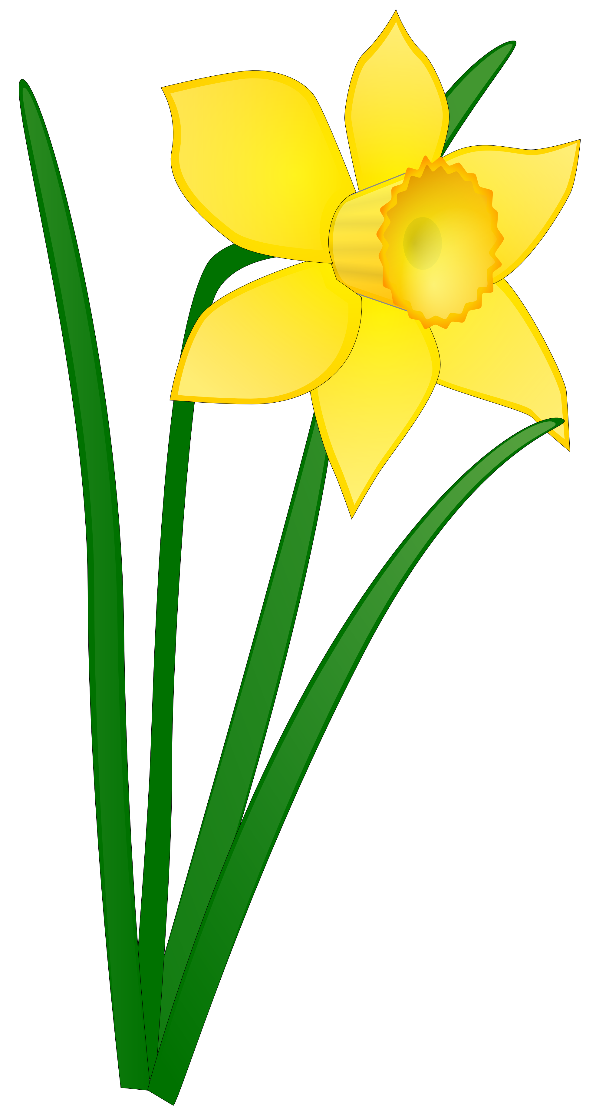 flowers without background.