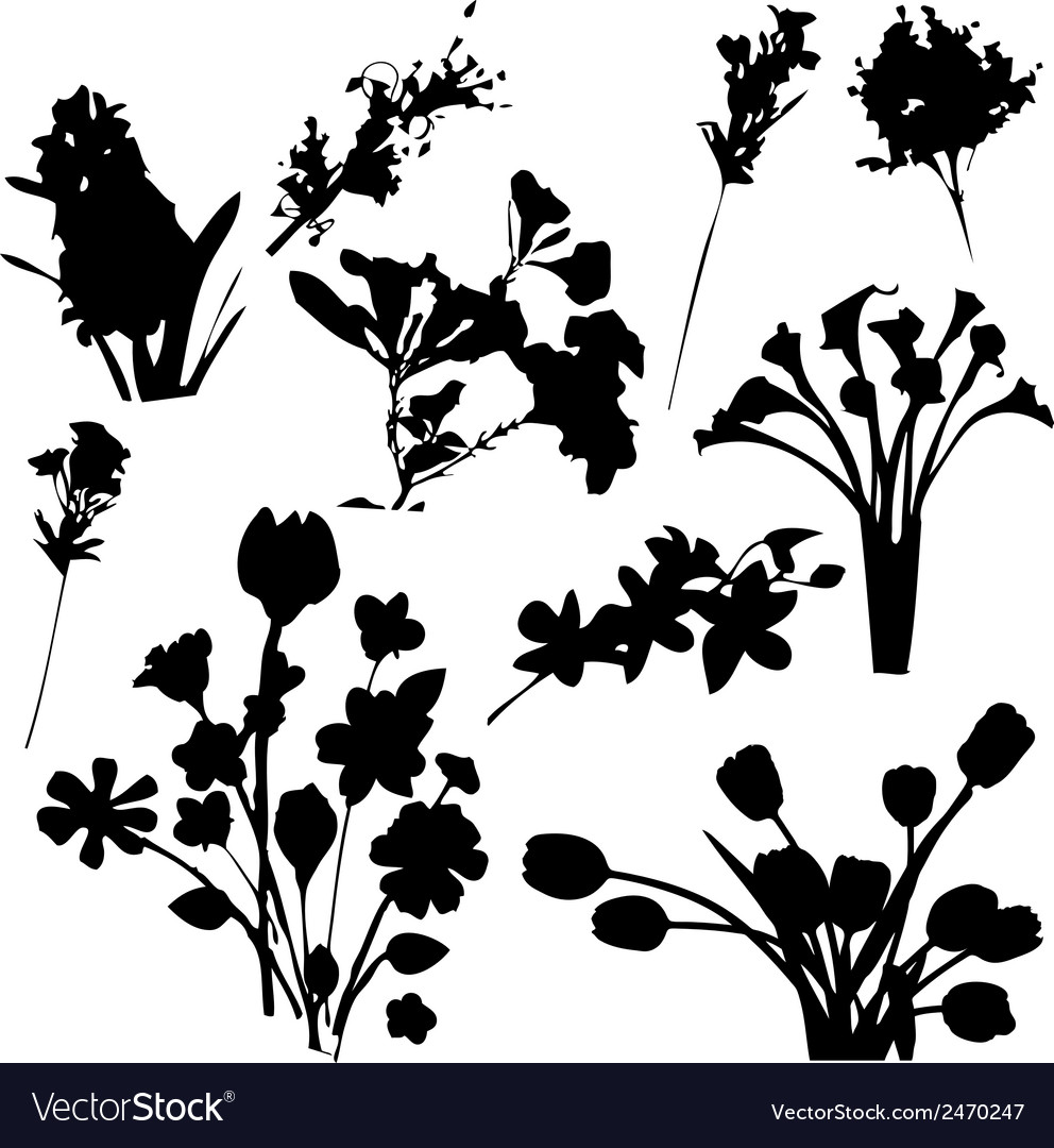Flowers Silhouettes.
