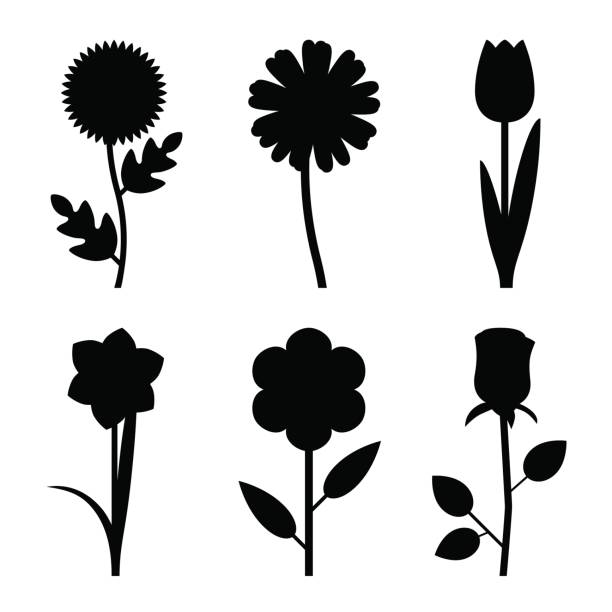 Top 30 Flower Silhouettes Clip Art, Vector Graphics and.