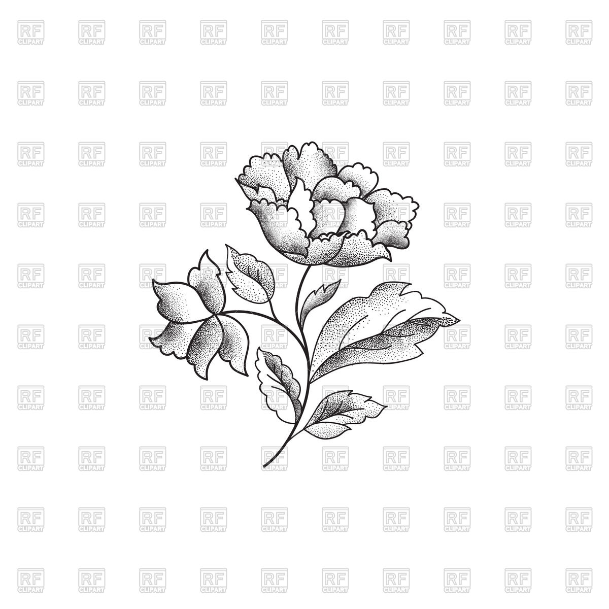 Flower sketch on white background Stock Vector Image.