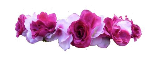 Download Snapchat Flower Crown PNG Transparent.