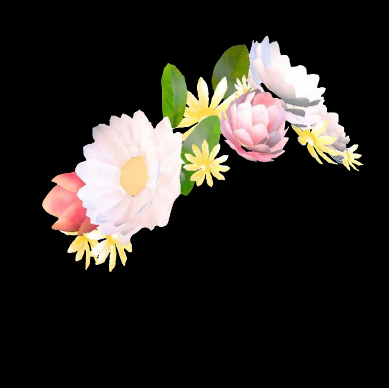 Snapchat Flower Crown Png, png collections at sccpre.cat.