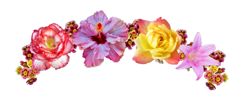 Download Snapchat Flower Crown PNG Picture.