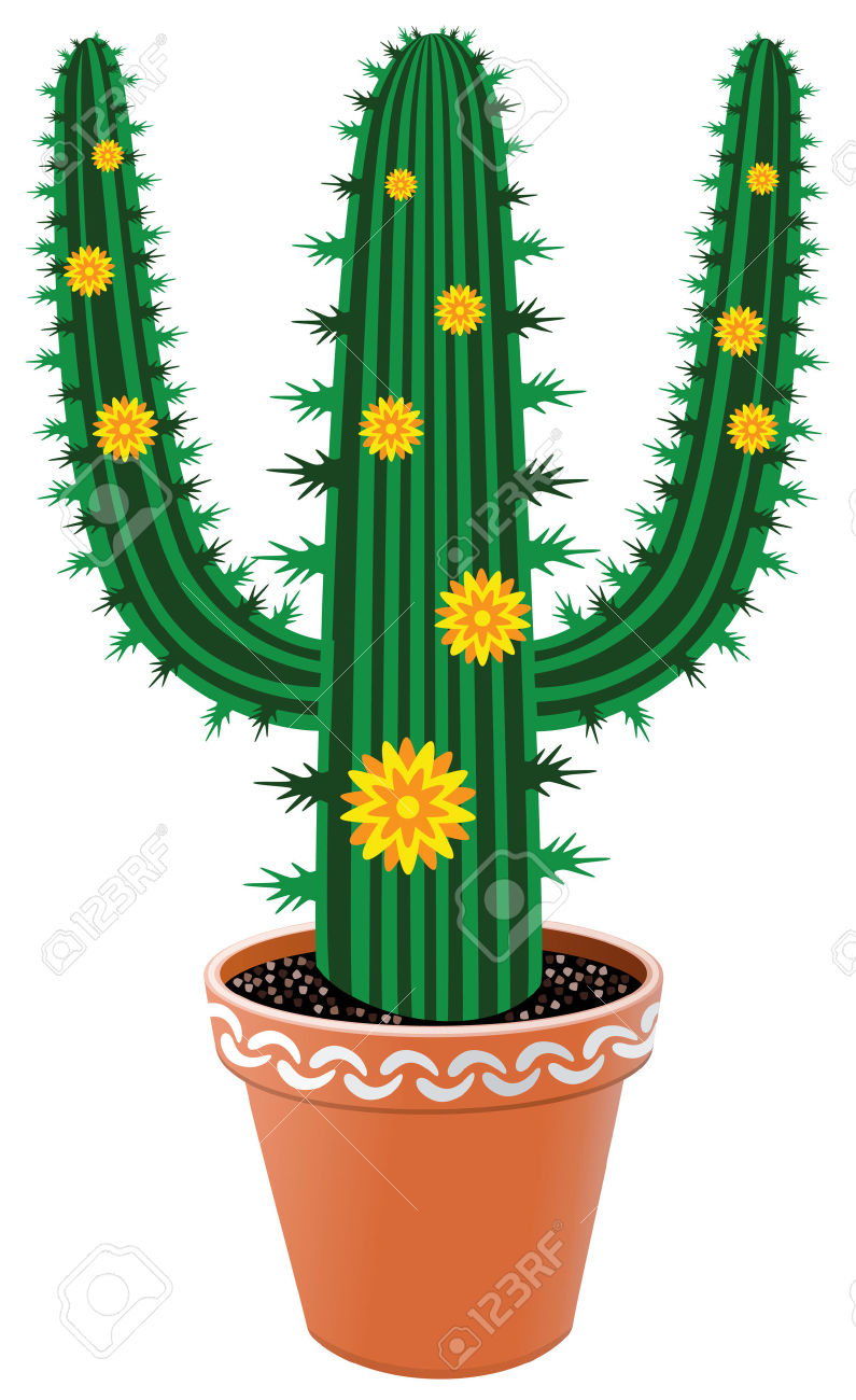 Pot Cactus With Flowers Royalty Free Cliparts, Vectors, And Stock.