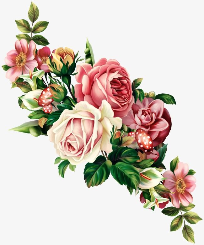 Rose, Rose Clipart, Hand Painted PNG Transparent Image and Clipart.