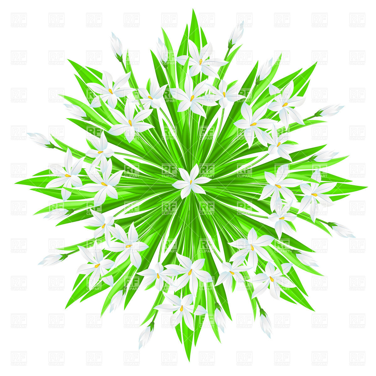 Spring flowers star bouquet Vector Image #8339.