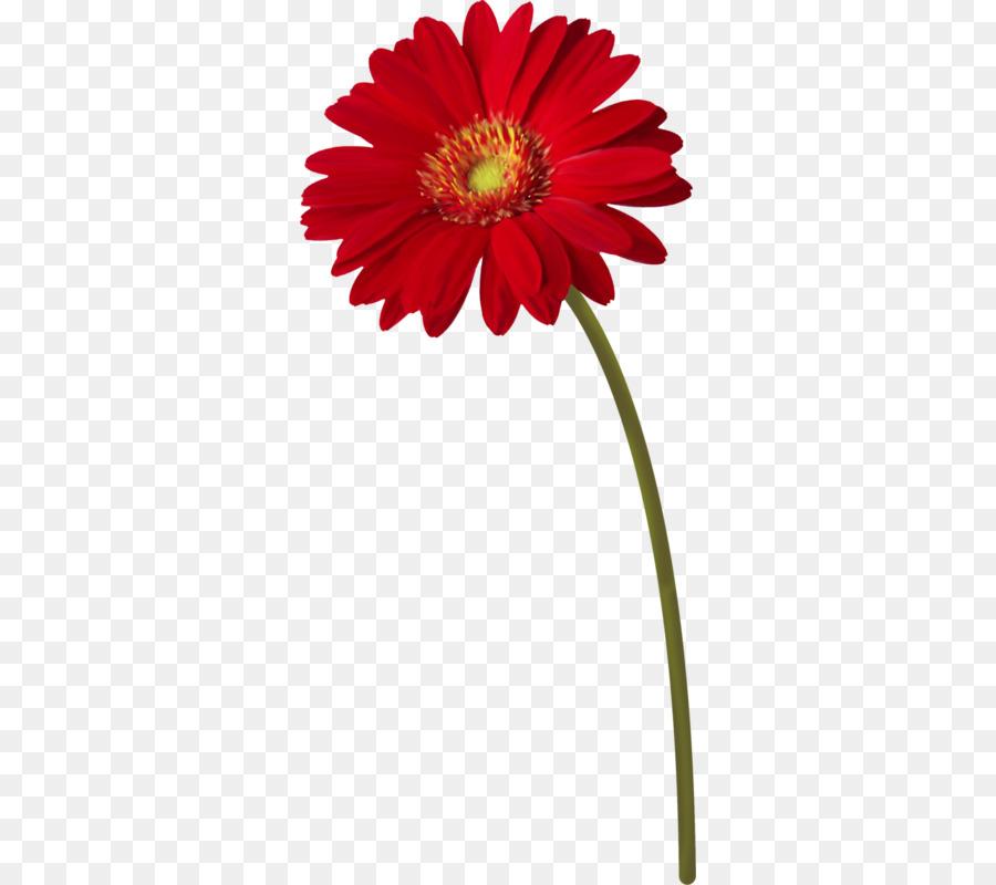 Flower Stem Png & Free Flower Stem.png Transparent Images #33188.