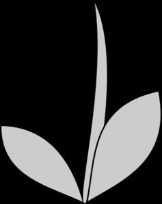 Flower Stem Clipart Black And White.