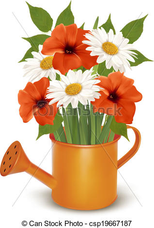 Vector of Summer flowers in a watering can. Vector. csp19667187.