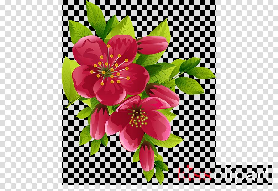 Download spring flower transparent background clipart Desktop.