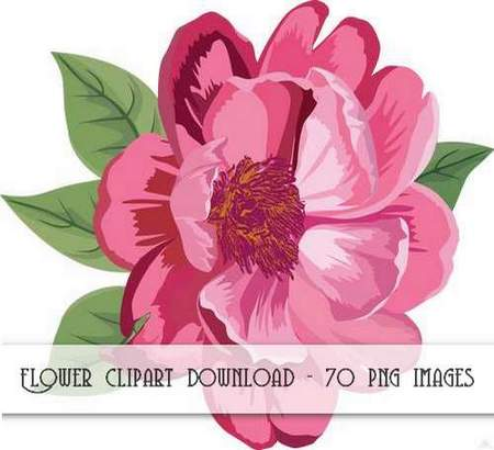 Flower clipart download.