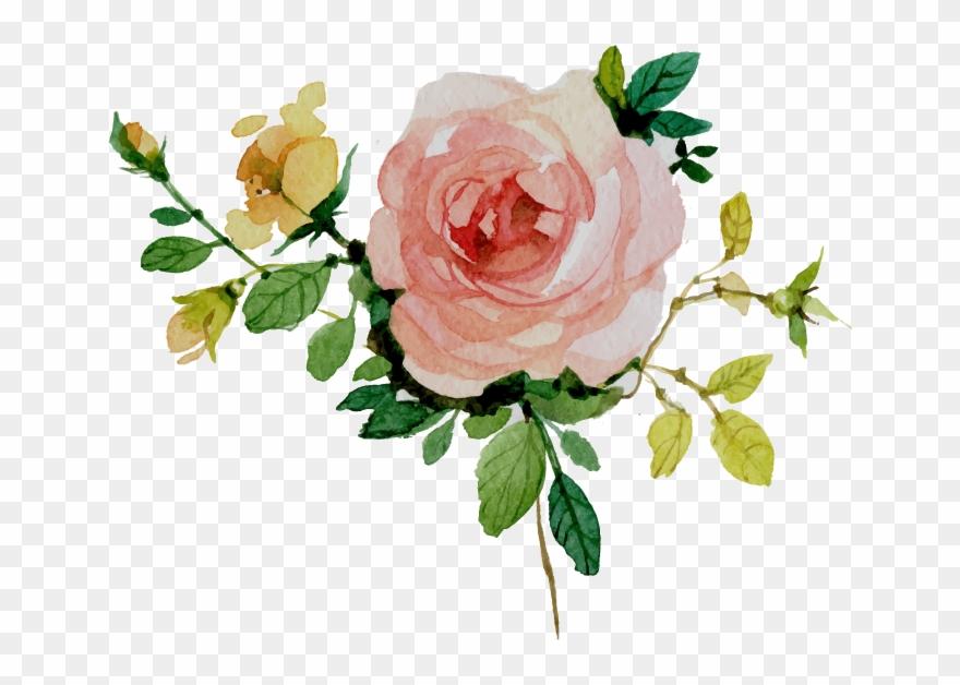 Vector Floral Flower Watercolor Clipart (#4137195).