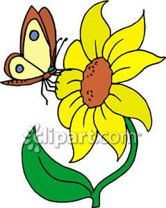 Sunflower and Butterfly Clip Art.