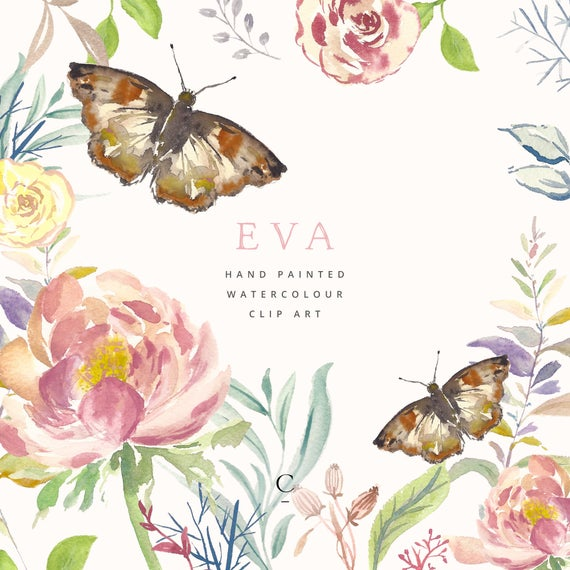 Hand Painted Flower and Butterfly Clipart.