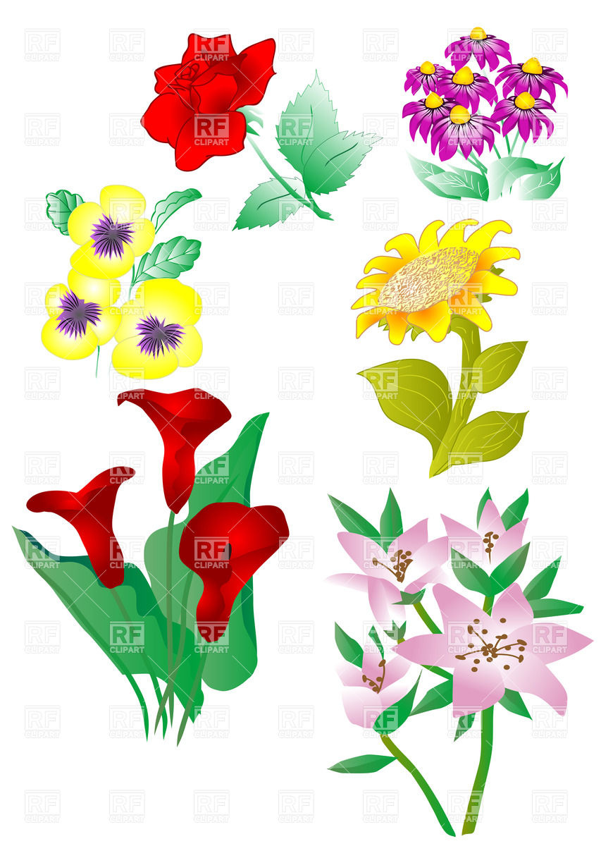 Set Of Flowers Clipart.