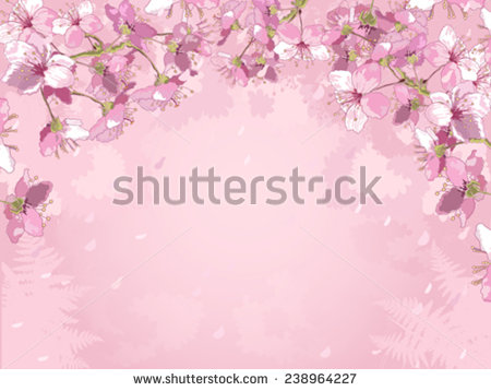 Beautiful Spring Flowers Pink Backgroundframe Composition Stock.