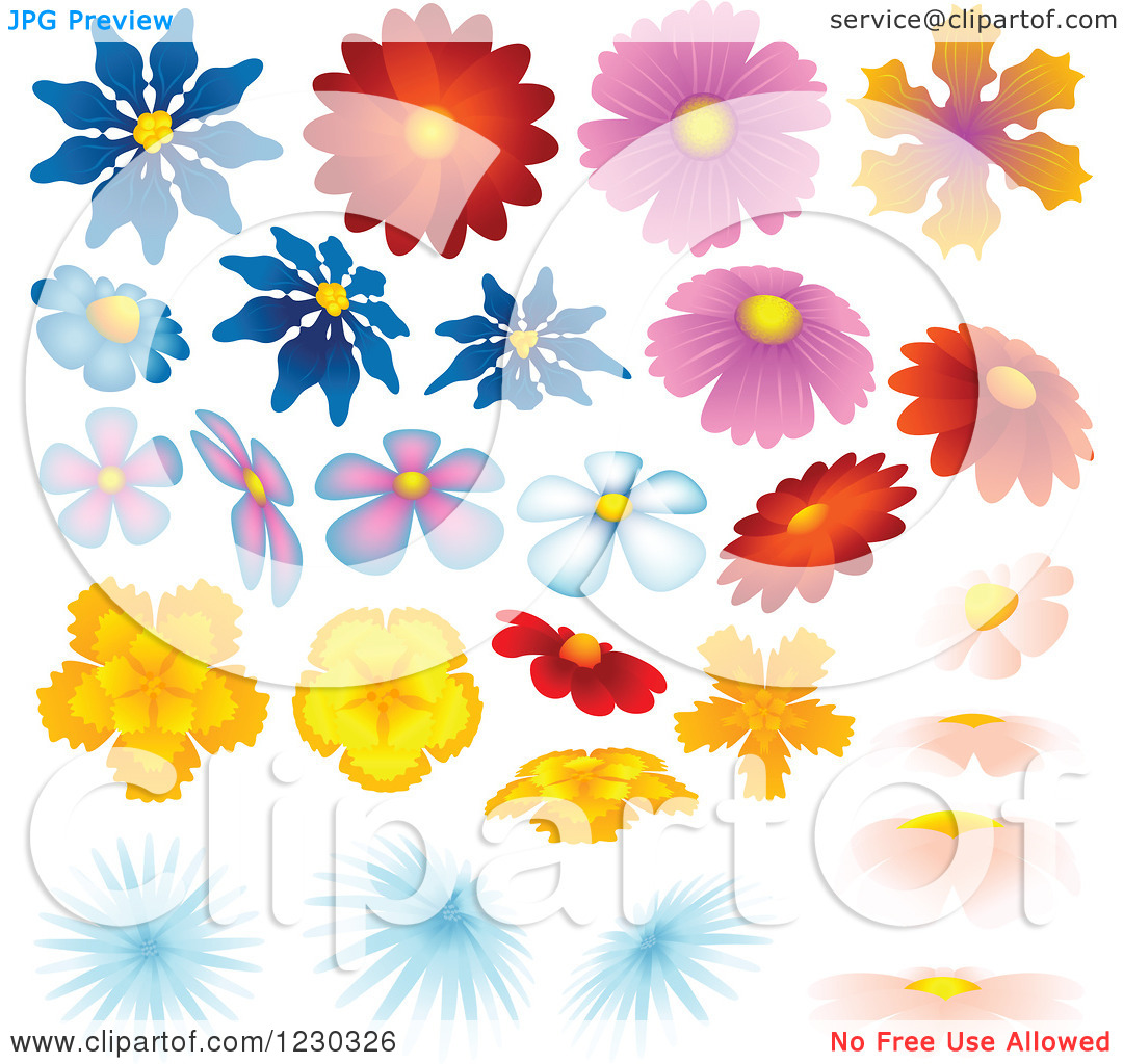 Clipart of Colorful Flower Heads.