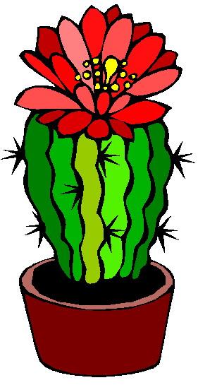 Cactus flower clipart.