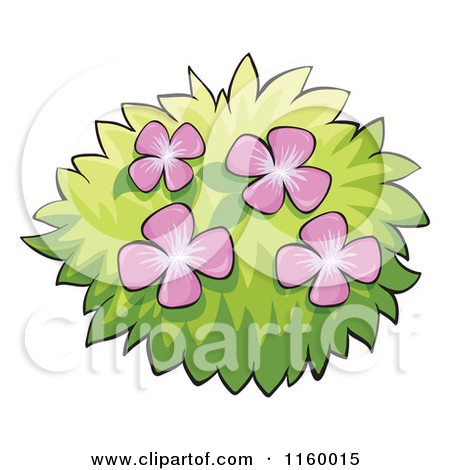 Royalty Free Stock Illustrations of Shrubs by colematt Page 1.
