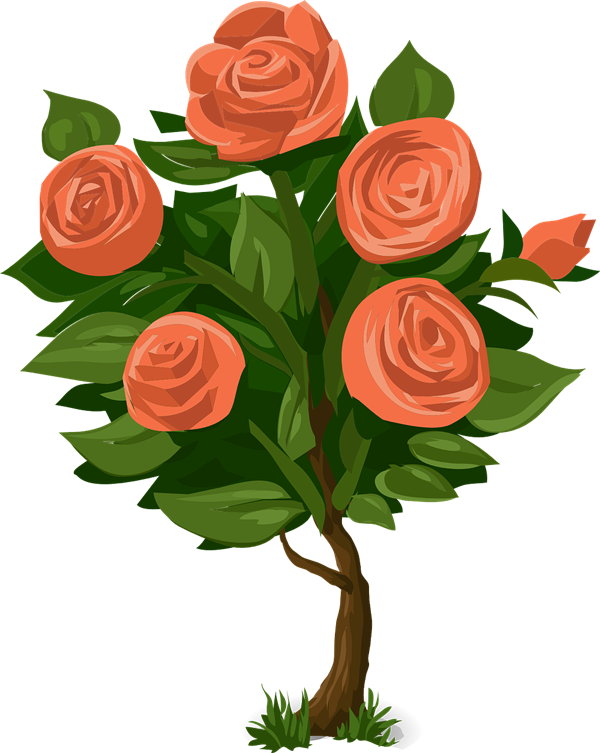 Rose shrubs clipart.