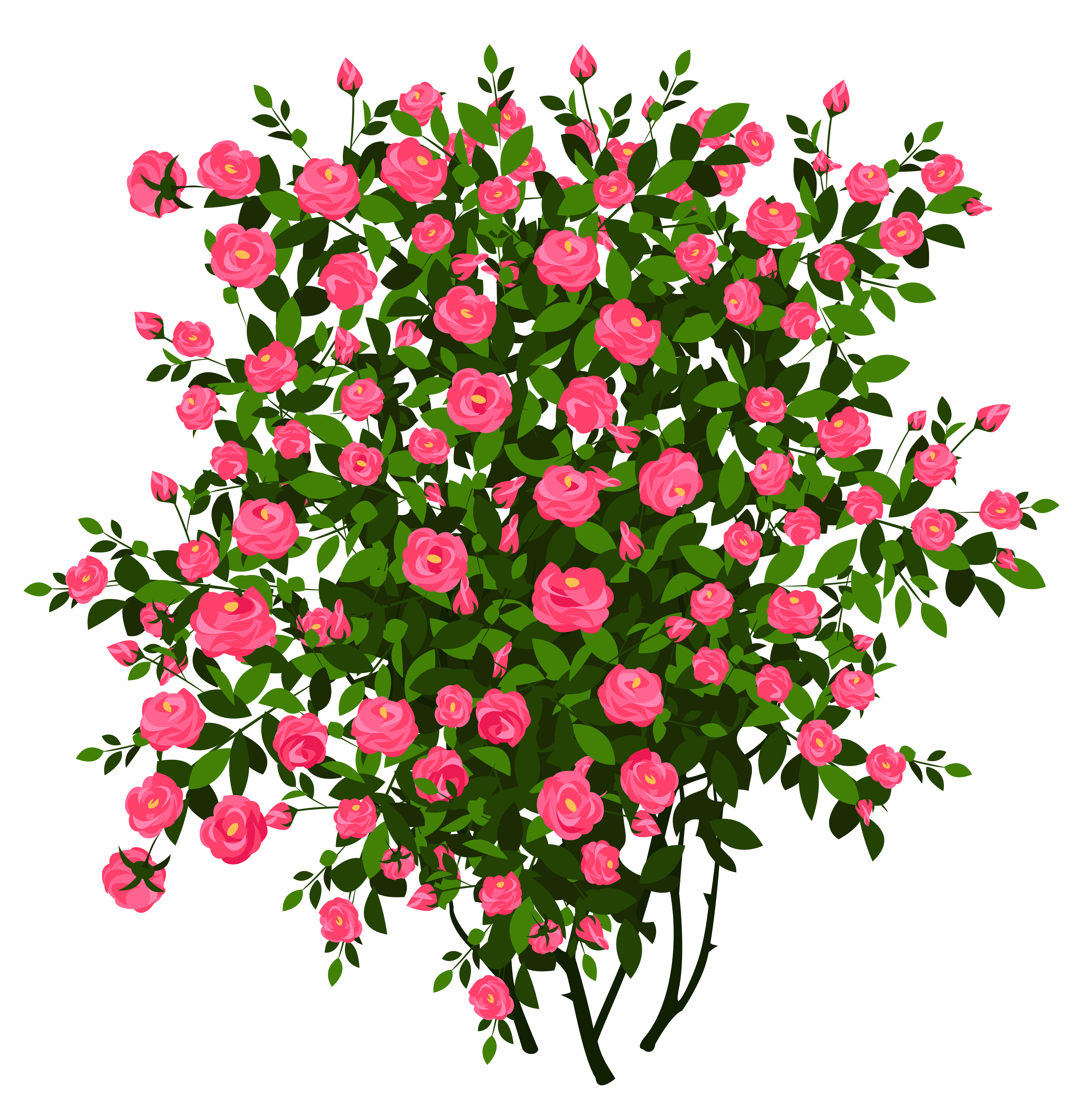 Pink Rose Bush PNG Clipart Picture.