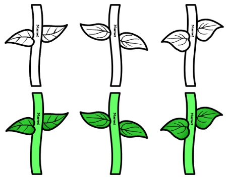 1000+ images about flower stems on Pinterest.