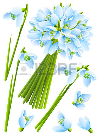 120 Flowering Time Stock Vector Illustration And Royalty Free.