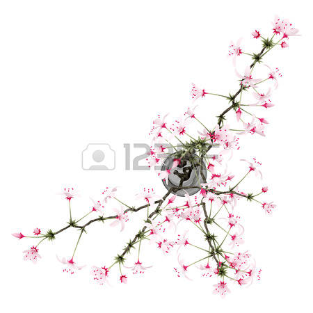 205 Flowering Twig Stock Vector Illustration And Royalty Free.