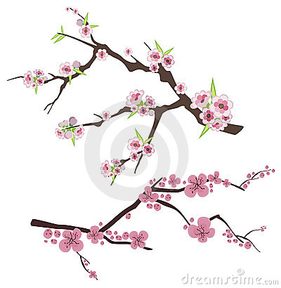 Floral Branch Series Royalty Free Stock Photo.