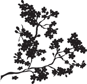 Cherry Blossoms Clipart Image.