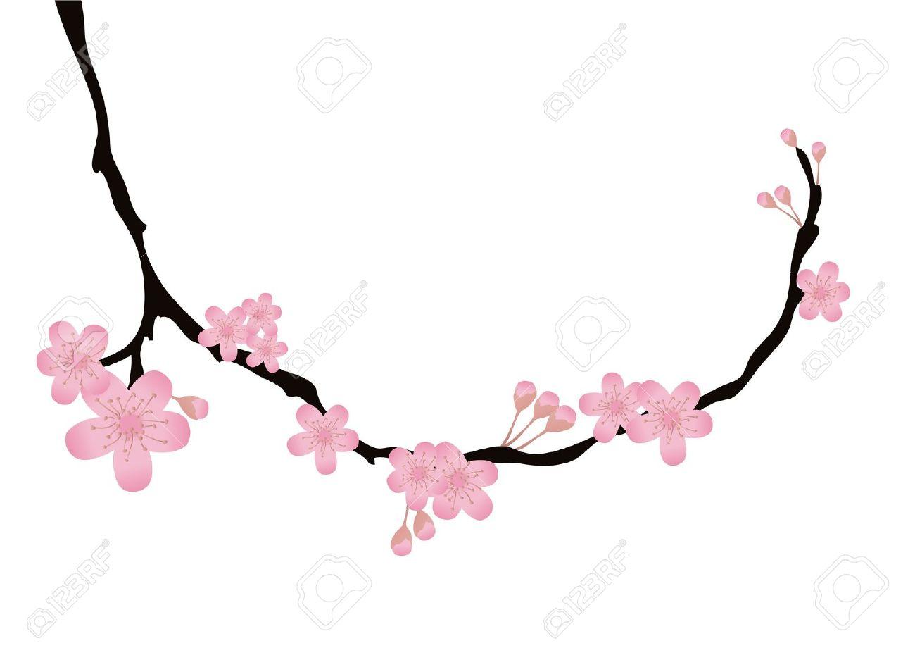 Clip Art Cherry Blossom Twig.