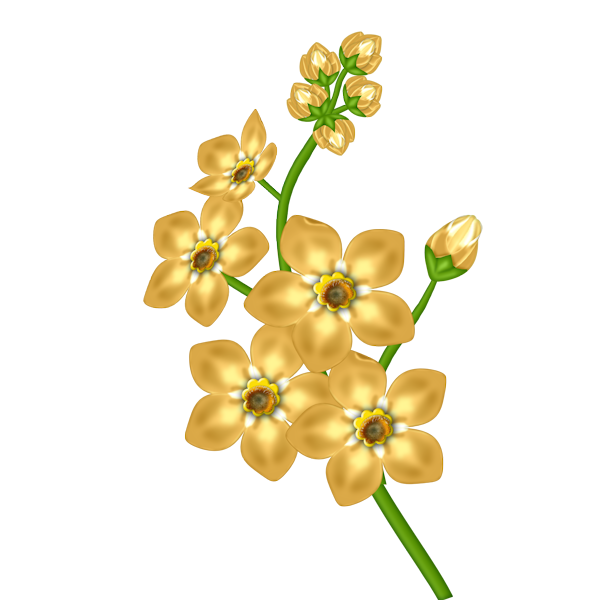 Yellow_Flower_Transparent_Clipart.png?m=1367532000.