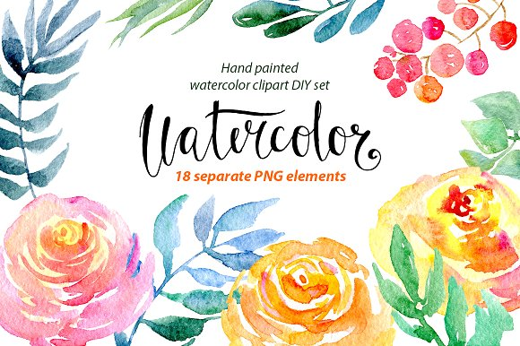 Watercolor flower clipart ~ Illustrations on Creative Market.