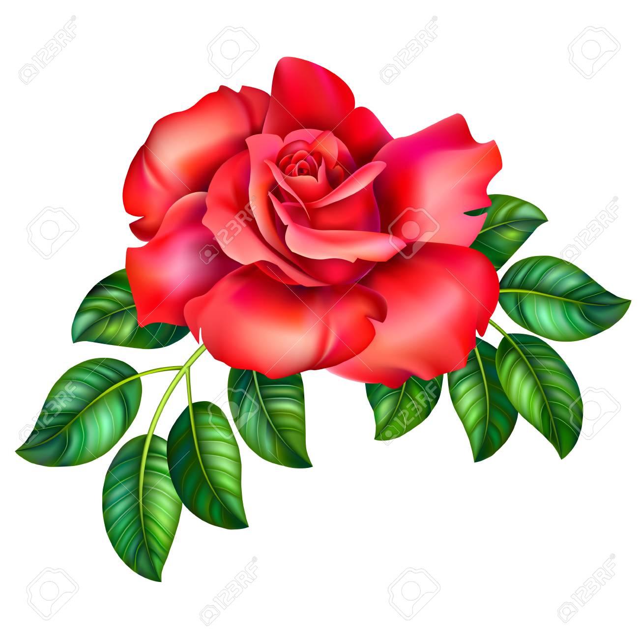 3D Roses Cliparts Free Download Clip Art.