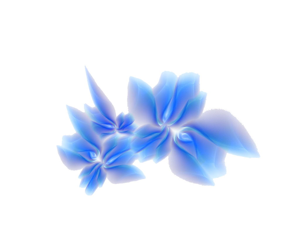 3D Flowers Png File.