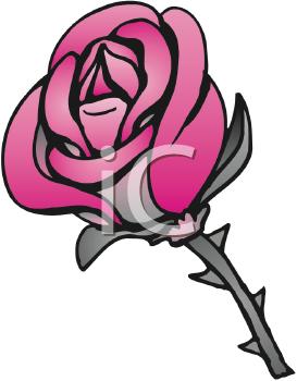 Thorn Clipart.