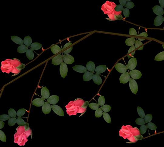 rose flowers clip art black and white