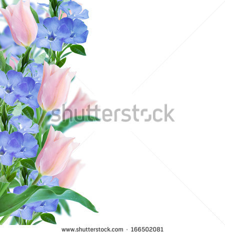 Flower Border Stock Images, Royalty.