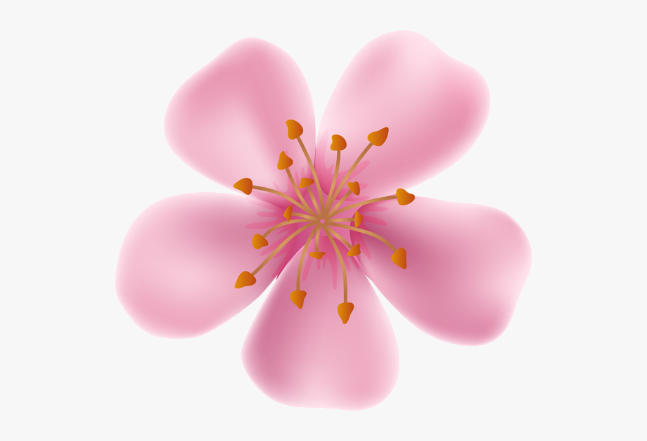 Flower Clipart Bloom.