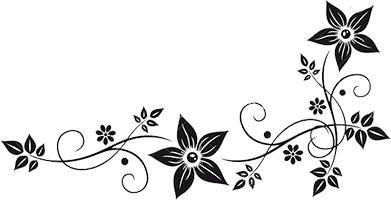 decorative border design.